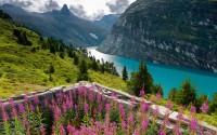Зображення 3 міні Швейцарія