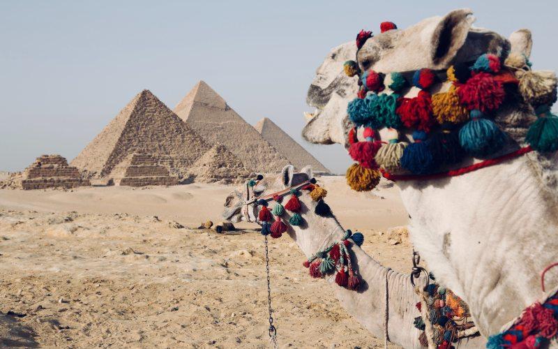 Зображення 2 Єгипет