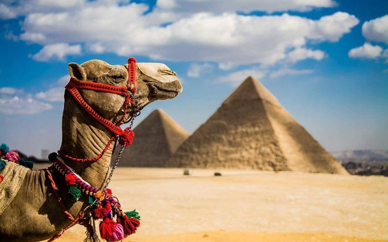 Изображение В Єгипті вводять нові туристичні візи!